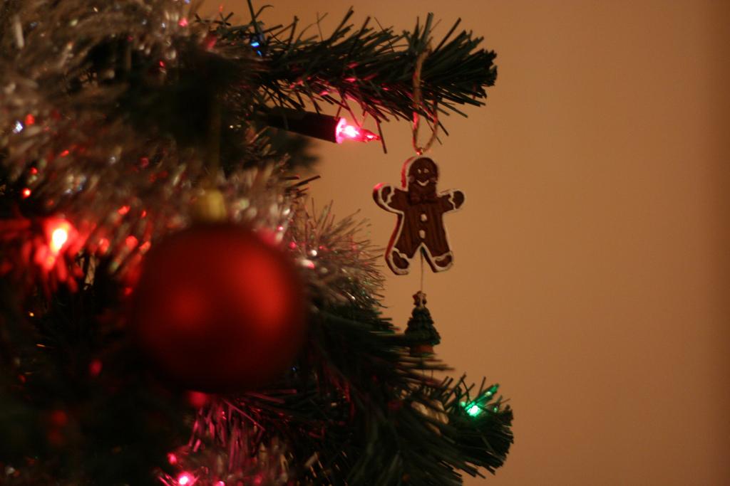 underneath the mistletoe last night;