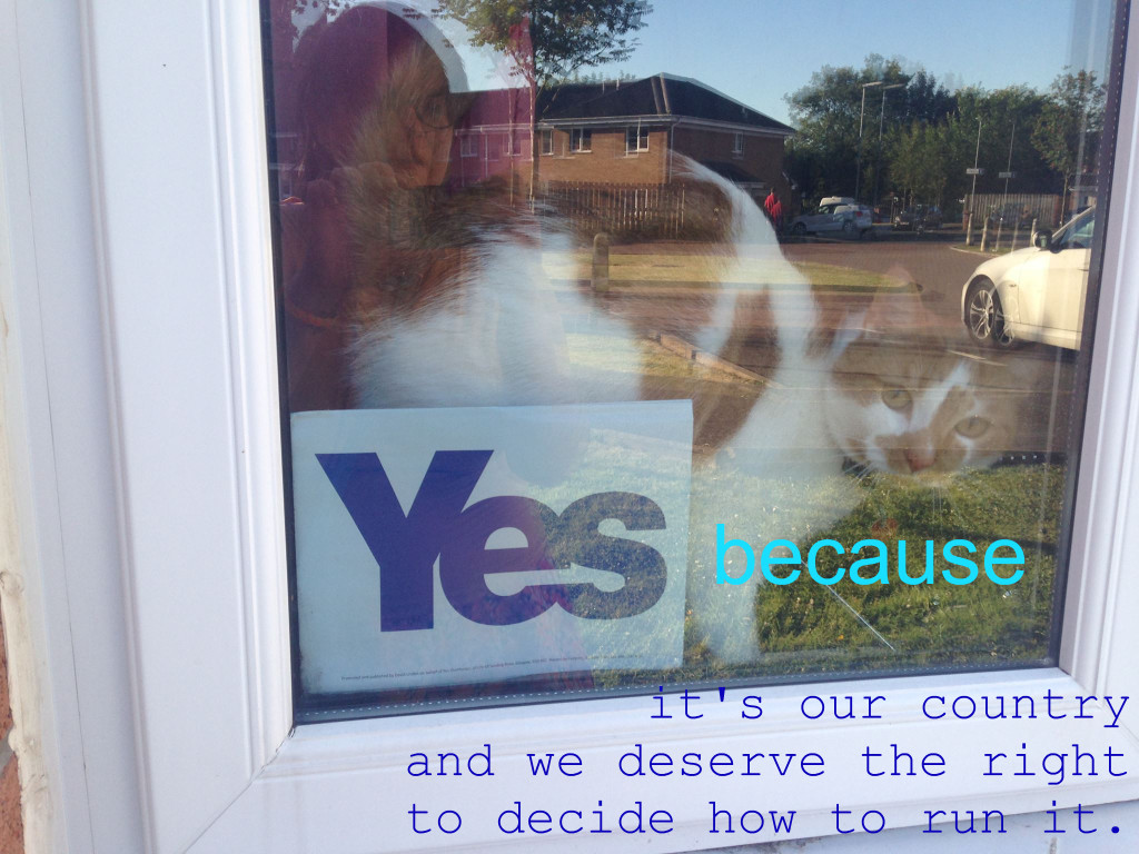 #yesbecause: it's our country and we deserve the right to decide how to run it