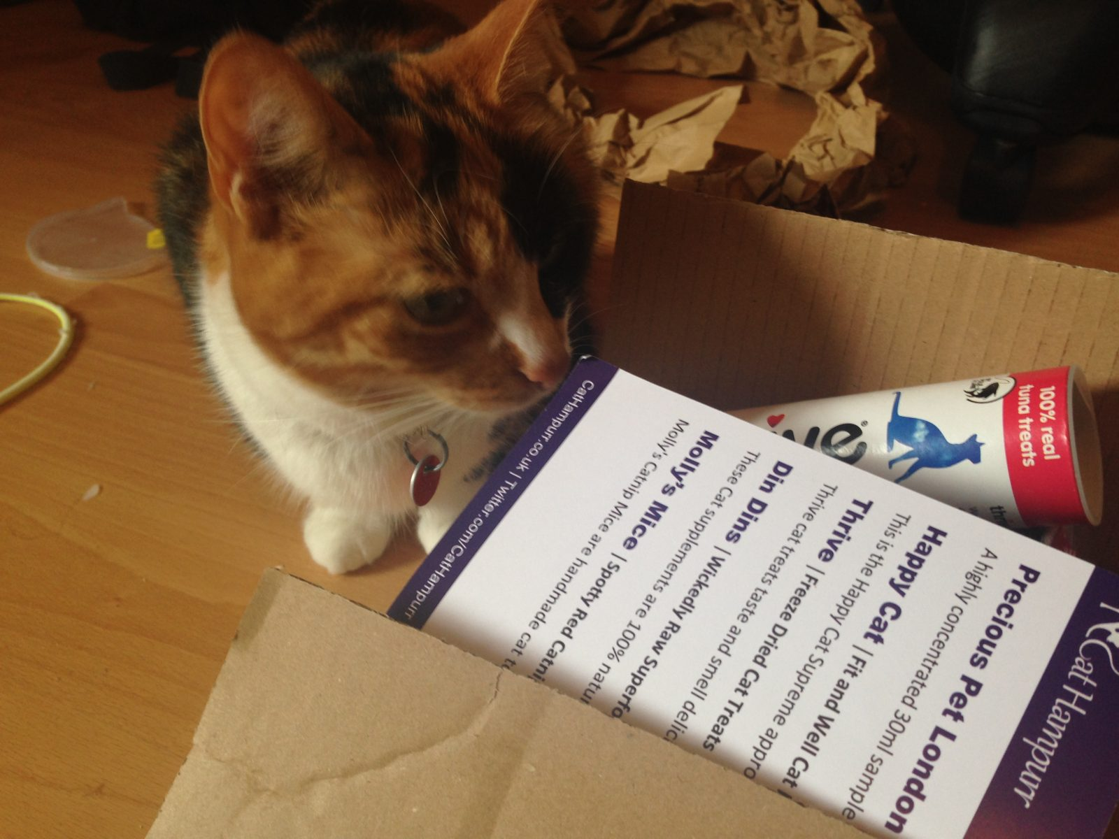 last year's postbox: cat hampurr;