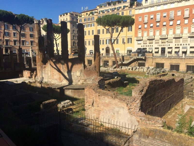 A day trip to Italy - Torre Argentina