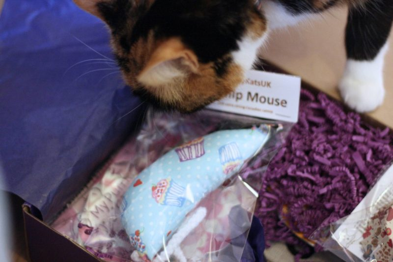 My Purrfect Gift Box October Home Baking themed box review