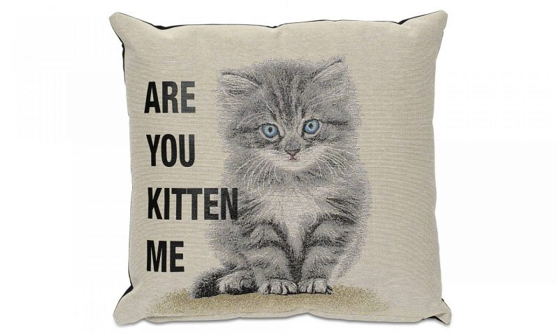 Office makeover - BoConcept Are You Kitten Me cushion