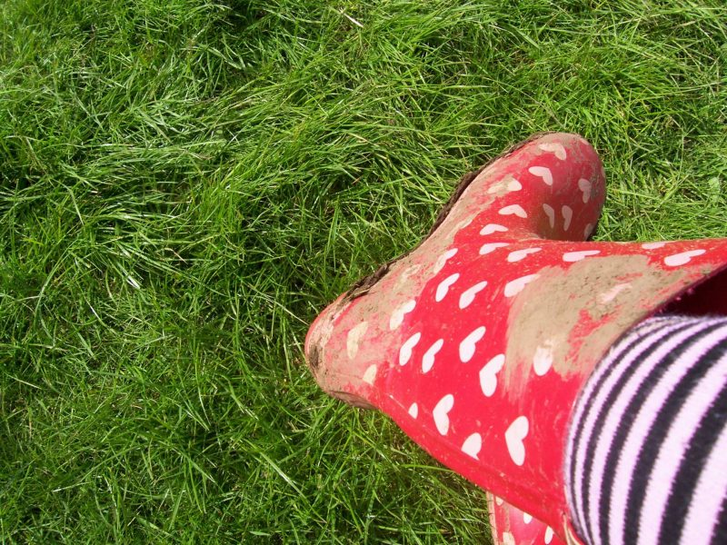 T in the Park - muddy wellies and green