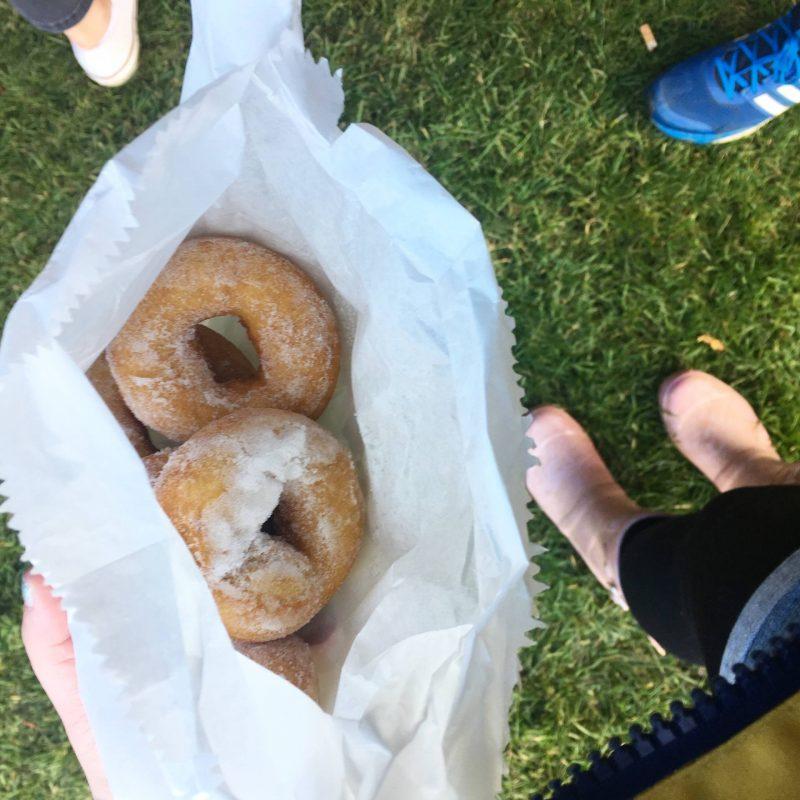 Festival donuts, TRNSMT 2017