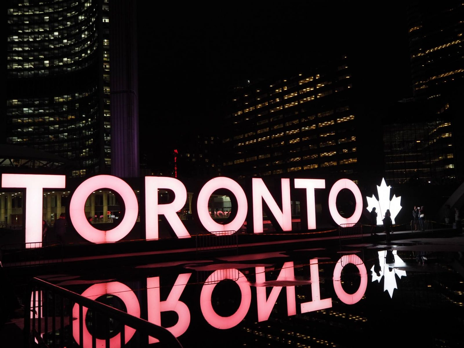 six (awesome) things you could be doing in toronto RIGHT NOW;