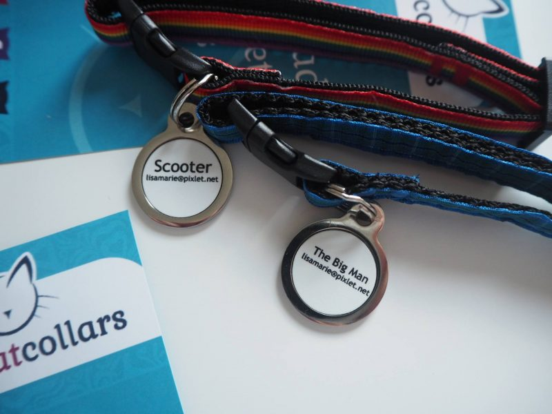 What to do if you cat goes missing: Collars and tags by Cool Cat Collars