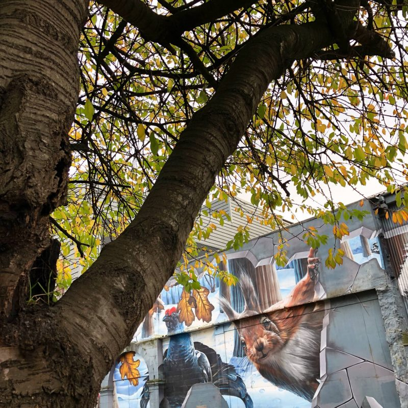 Squirrel mural in Glasgow's Merchant City, October 2018