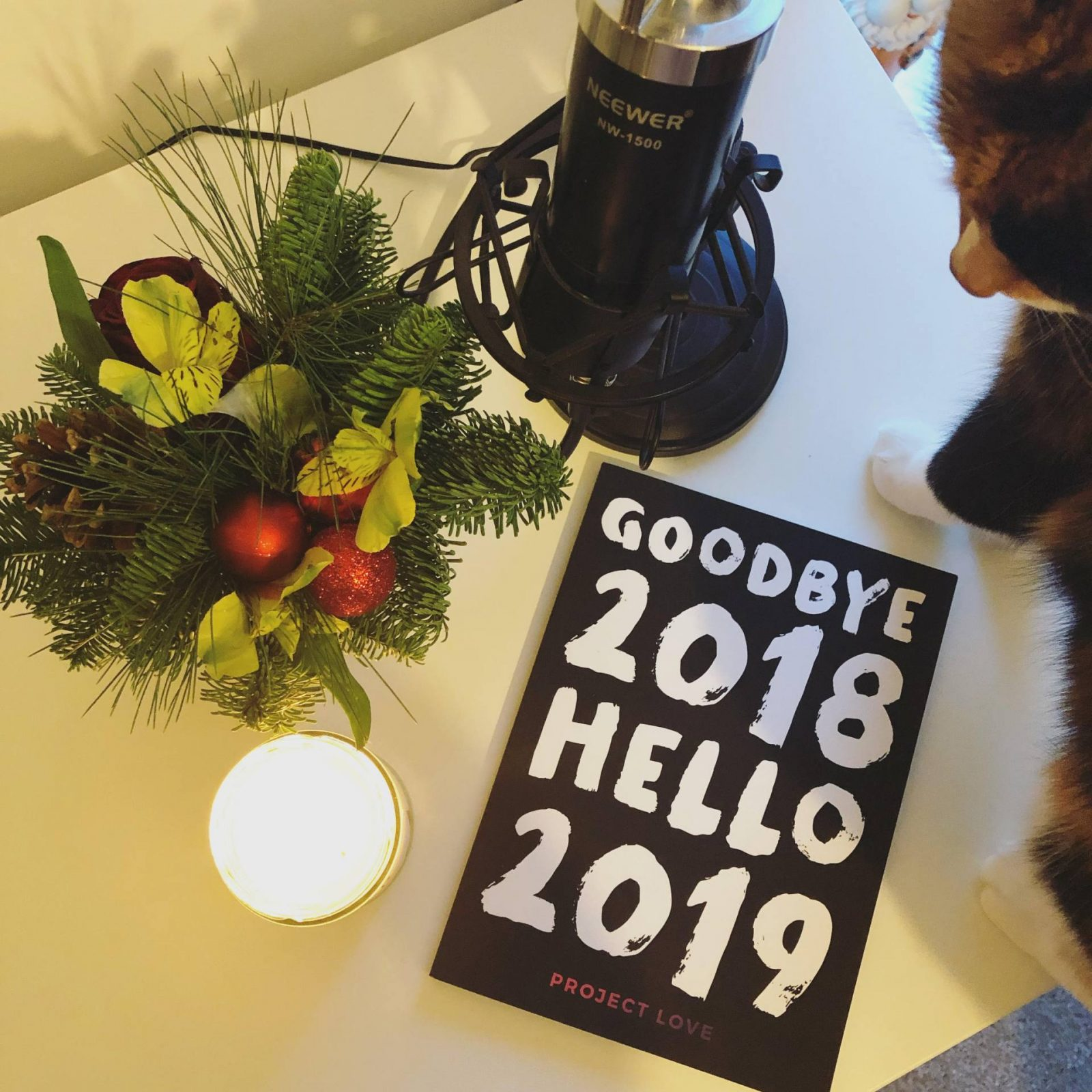 Goodbye 2018, Hello 2019 journal with Christmas foliage and podcast microphone